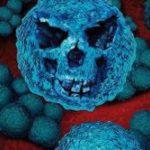 Названы предметы, которые быстро накапливают бактерии