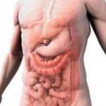 Ученые: стресс может положительно влиять на кишечник
