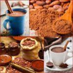 Эксперты обнаружили новое полезное свойство какао